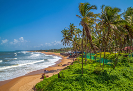 Flights to Goa